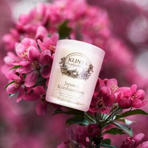 Doftljus Japansk Körsbärsblom från Klinta_1000x1000